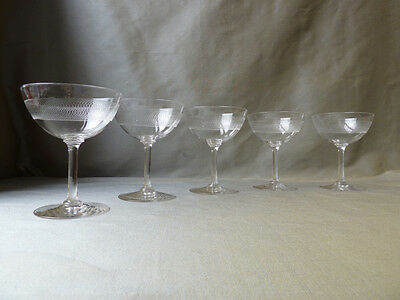 5 Antique Edwardian Acid Etched Champagne Glasses, Linked Circle, Pall Mall