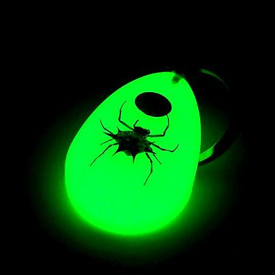 Glow In The Dark KEYRING REAL BUGS TAXIDERMY Camping tent BEST GIFT UNIQUE
