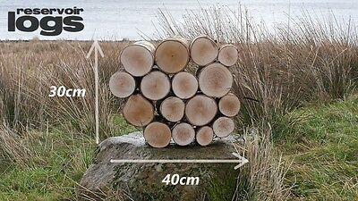 Full Round 20cm Long Kiln Dried Birch Decorative Quality Logs Fine Sawn Ends