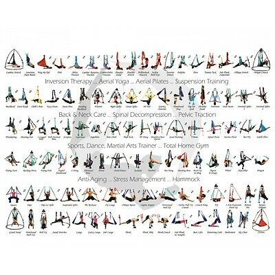 Poster positions HamaYoga