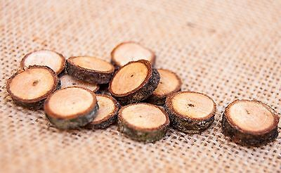 Mini Wood Slices (20 pack) 1 - 2 cm branch slices for crafts and fairy gardens