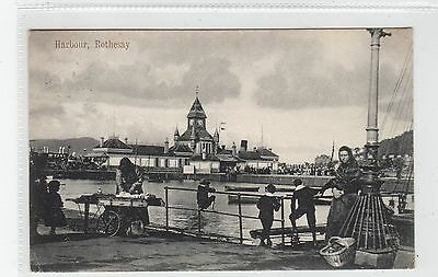 HARBOUR, ROTHESAY: Isle of Bute postcard (C28085)