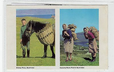 ERISKAY PONY/CARRYING HOME PEAT: South Uist postcard (C28155)