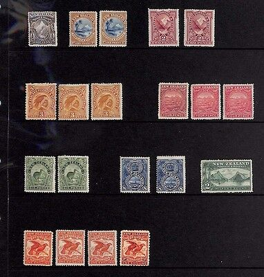 SS4852 NEW ZEALAND Collection *BIRDS* Mounted Mint MM