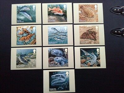 PHQ 390 Mint 2014 Sustainable Fish 10 cards.