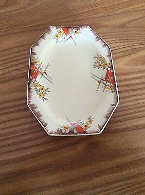 Vintage - rectangular plate by Royal Staffordshire Pottery