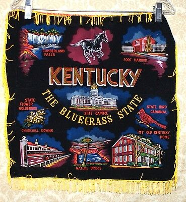 Vintage Velvet Painted Souvenir Pillow Case Cover Kentucky The Bluegrass State
