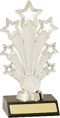 Silver Star Victory Achievement Trophy Award 175mm FREE Engraving