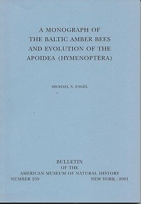 Monograph Fossil Baltic Amber Bees Evolution Hymenoptera Michael Engel AMNH Bul.