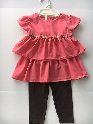 Gymboree top, Carter's pants toddler girls two piece outfit size 4T