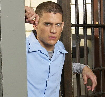 "010 Wentworth Miller - Prison Break American Actor 15""x14"" Poster"