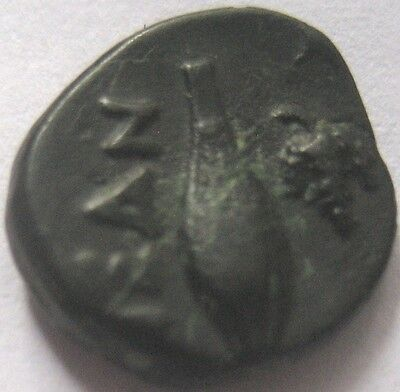 "TROAS NEANDREA 4th Cent. b.C. AE 10 ""Corn and Grapes"" VERY RARE"