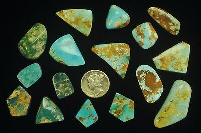 TAUBERT NUMBER 1 NATURAL TURQUOISE JEWELER'S LOT 16X CABS 165cts LYON COUNTY, NV