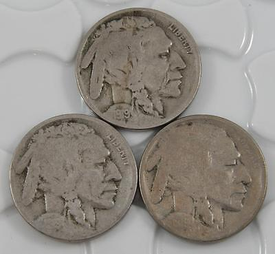 1919 P D & S Indian Head Buffalo Nickel 5 Cent 3 Coin Set Lot A0517