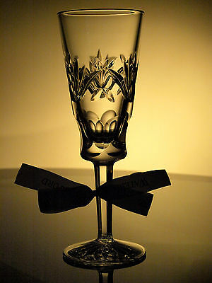 Waterford Crystal Ashling Fluted Champagne Glass Brand New Made in Ireland