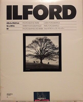 Carta Ilford Multigrade IV RC De Luxe 40.6x50.8 - 10 fogli