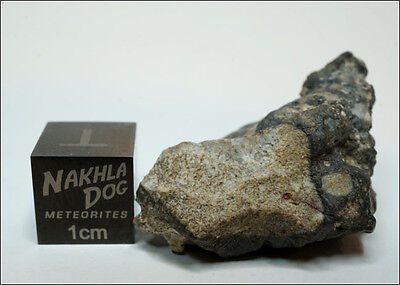 Amazing looking Lunar Meteorite NWA 11273 - 8.9 grams - Own a Piece of the Moon