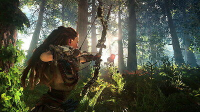 "012 Horizon Zero Dawn - Aloy Adventure Role Play Game 24""x14"" Poster"