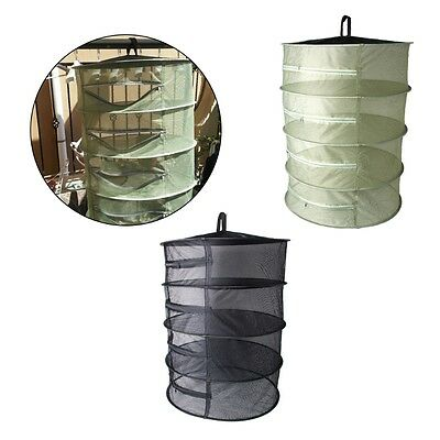 4 Layer Collapsible Mesh Dry Net Hanging Herbal Bud Plant Clothes Drying Rack