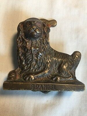 Rare Small Brass Spaniel Dog Door Knocker