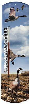 Heritage America by MORCO 375CG-P Canadian Geese-Photos Outdoor or Indoor Thermo