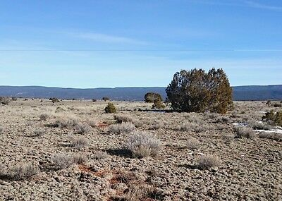 20 Acres of Secluded Land in Cibola County, New Mexico