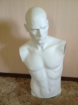 Adel Rootstein Male Mannequin Torso With Head Only