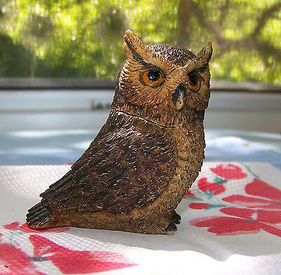 Great Horned Owl box small resin box w/guitar image inside