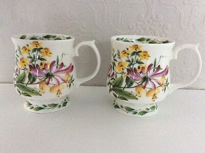 Queen's Fine Bone China  RHS Tural Collection Mugs