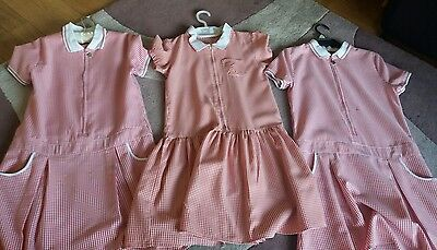 3 x girls school summer dresses (1 × 9-10 and 2 x 10-11) Nutmeg and George