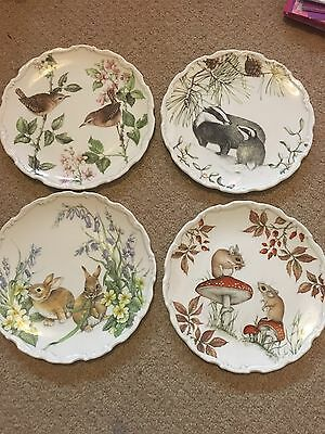 Royal Albert The Country Walk Collection
