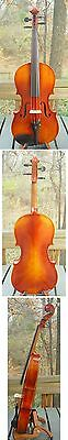 "Hauser Bavarian made 16"" Viola with case"