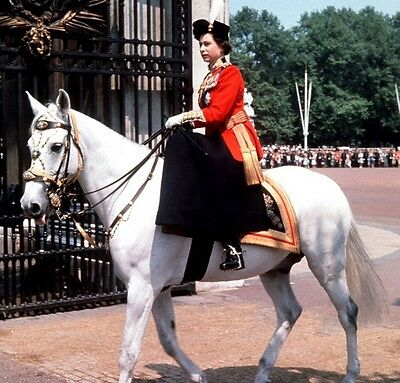Trooping The Colour Std 8mm Film