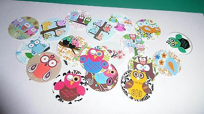 Pre Cut One Inch Bottle Cap Image Owl Owls Free Shipping