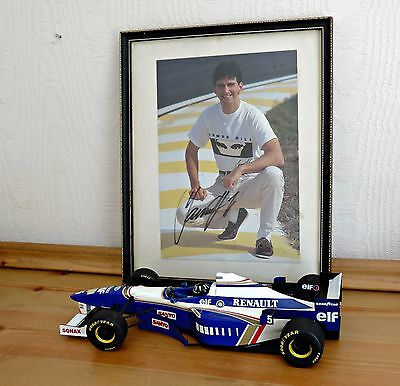 DAMON HILL Hand Signed picture/PHOTO DISPLAY MOUNT 27x22 World Champion F1 1996