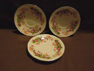 "Queens Rosina Ltd  "" WOMAN AND HOME "" 3 SAUCERS"