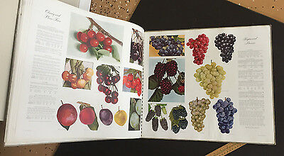 Montgomery Ward, Wards Book of Gardens HUGE 1943 Flower Fruit Vegetable Catalog
