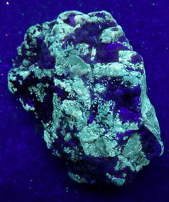 FLUORESCENT MINERAL: ANDALUSITE in mica schist : Bailey Island, Maine