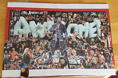 The Miz Signed A3 Poster...awesome Wwe