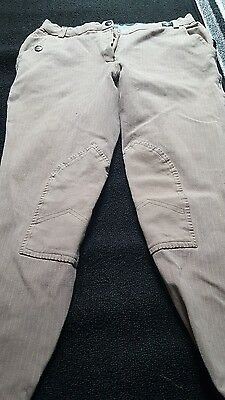 Mountain Horse Breeches Ladies Size 30