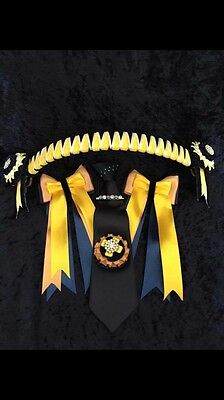 SALE Equestrian Showing Complete Browband Set With Crystal Tie Pin