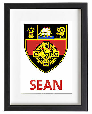 Down Gaa A4 Poster Name Personalised Ireland Hurling Gaelic