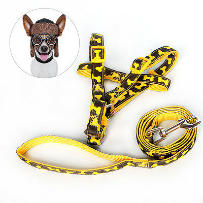 Pet Collar Adjustable Buckle Cat Puppy Dog Collar Leash Strap for XS S size Dog