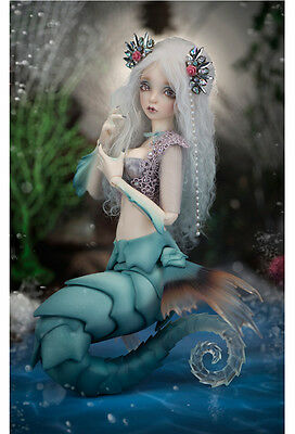 1/4  bjd doll ball jointed dolls sea horse big female animal body with face up
