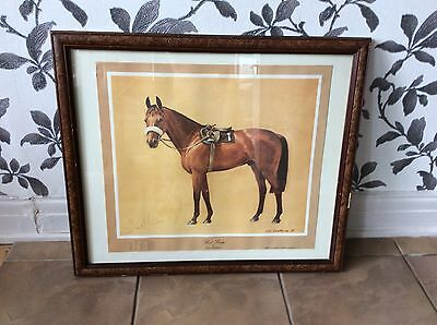 Framed Print Red Rum Neil Cawthorne Signed Limited Edition D.McCain Vintage 79