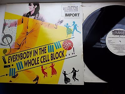 EVERYBODY IN THE WHOLE CELL BLOCK 12 inch LP HYBRID RECORDS MIXED COMPILATION