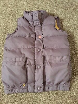 Girls Joules Purple Gilet 11-12