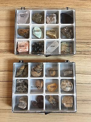 Collection Set Of Fossils And Minerals