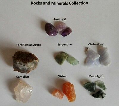 Rock Collection  Agate Citrine Chalcedony Amethyst Serpentine Carnelian