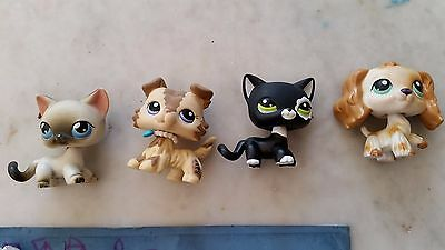 lps cats and dogs bundle